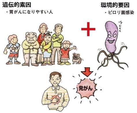 遺伝的素因と環境的要因が合わさると発がんする